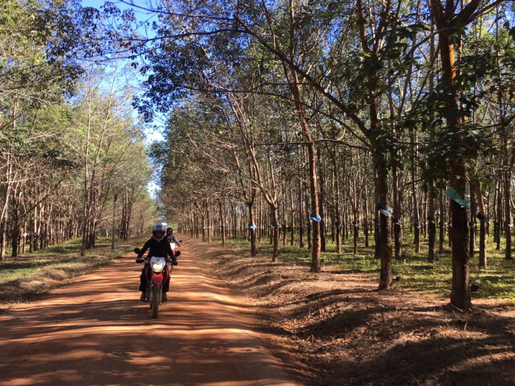 VIETNAM MOTORCYCLE TOUR FROM HOI AN TO SAIGON VIA CENTRAL HIGHLANDS