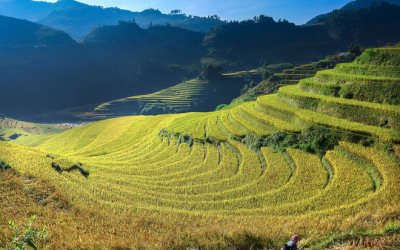 Far North Vietnam Motorbike Tour