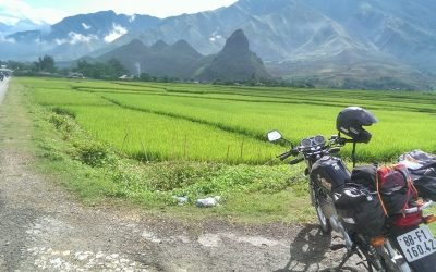 Hanoi motorbike tour to Cuc Phuong, Hoa Lu and Tam Coc