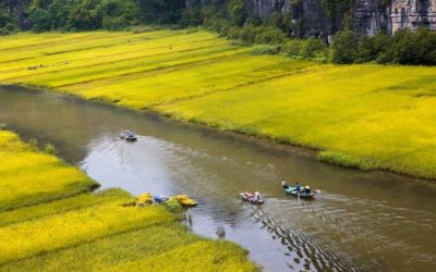 Hanoi motorbike tour to Cuc Phuong and Tam Coc in Ninh Binh